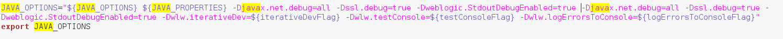 شکل 4: نحوه فعال سازی debugging